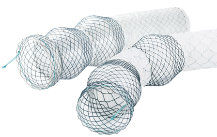 Niti-S™ Esophageal Beta  Stent